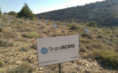 GRUPO ACMS,EMPRESA DE CONSULTORÍA SE INCORPORA AL BOSQUE PYMES