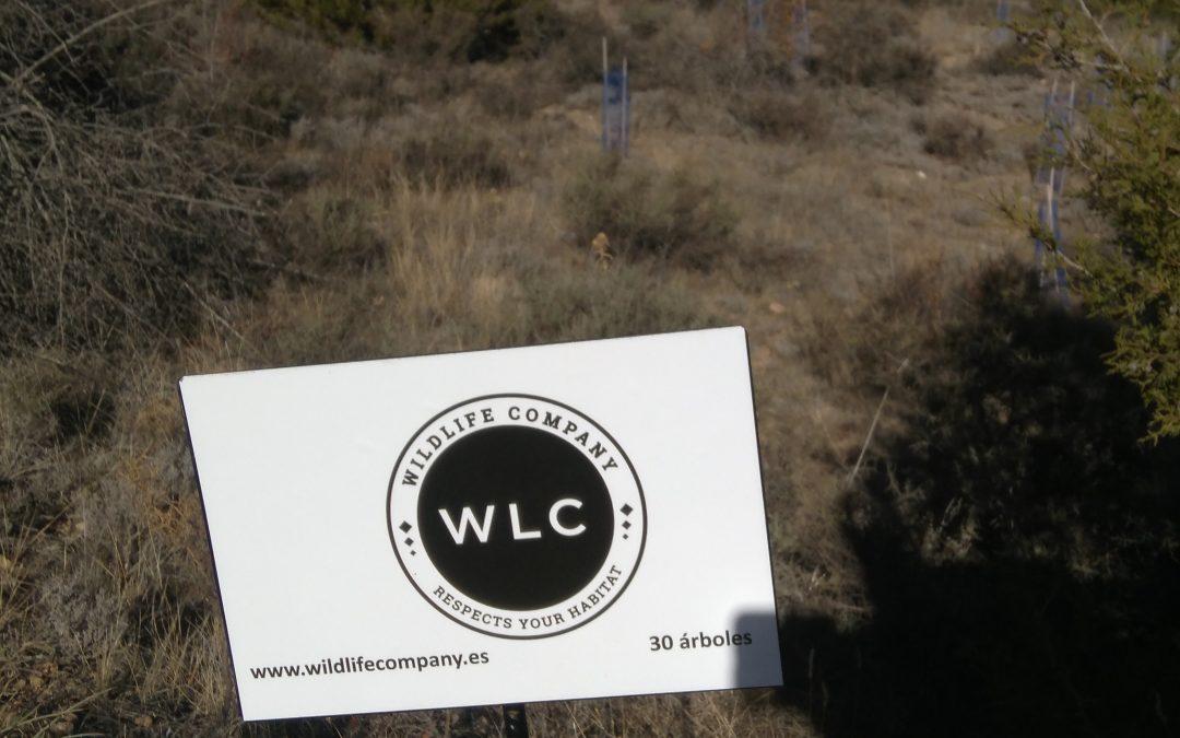 WILDLIFE,EMPRESA DE MODA SOSTENIBLE SE INCORPORA AL BOSQUE PYMES